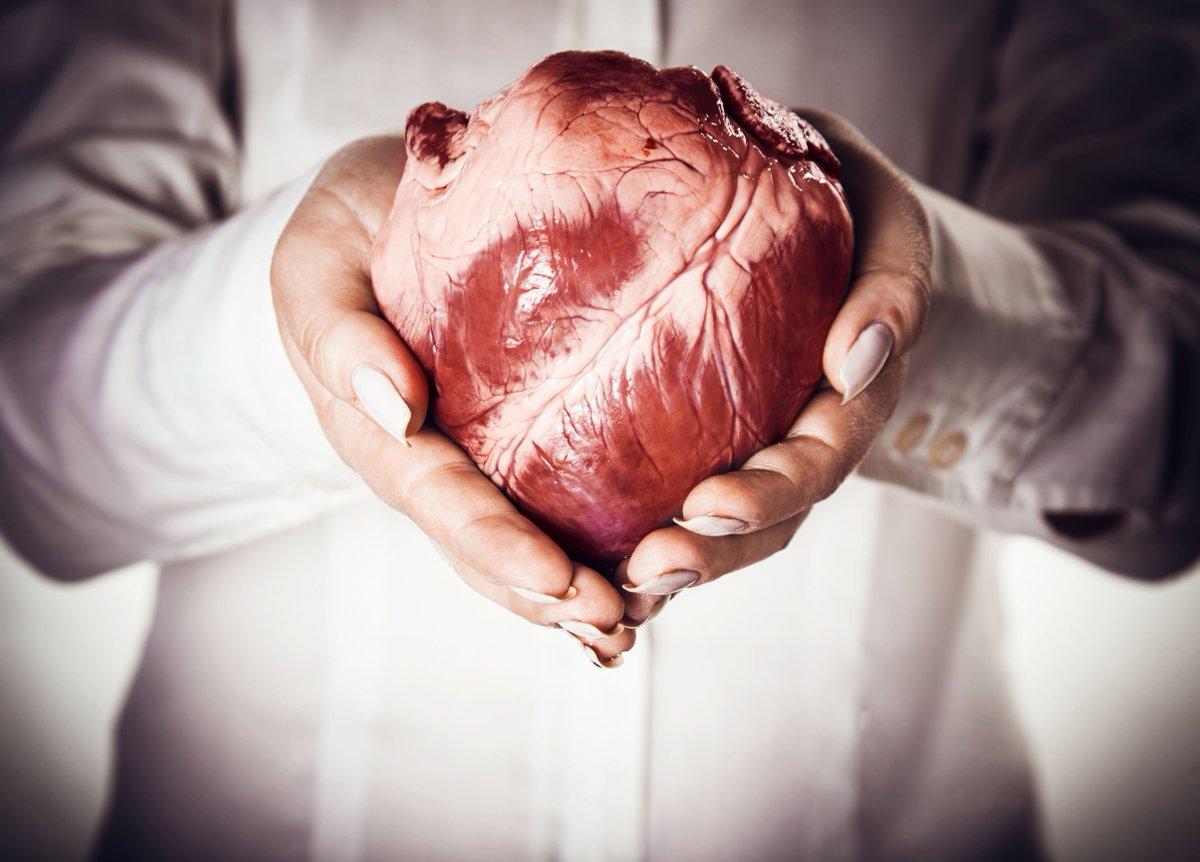 Ciri-ciri Terkena kanker hati dan cara mengenal gejala ...